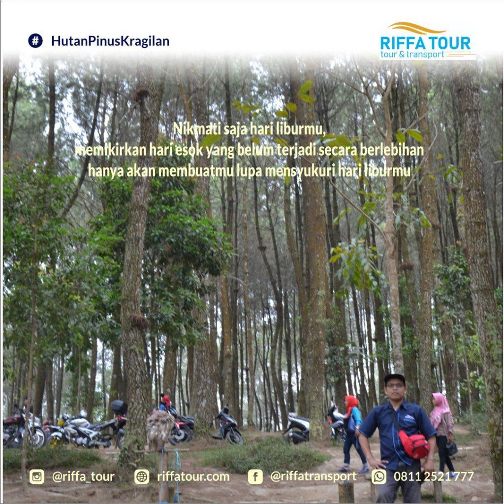 Jelajah Hutan Pinus Kragilan bersama Riffa Tour