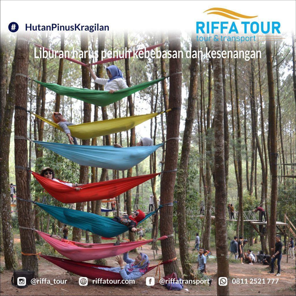 Top Selfie area hutan Pinus Kragilan seru banget